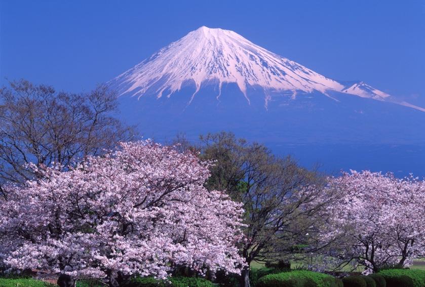 Mt. Fuji Climbing Information